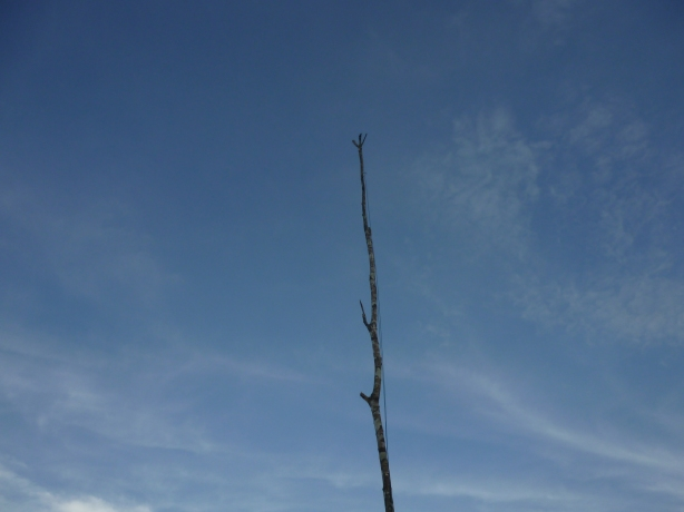 O Mastro pronto para receber as antenas